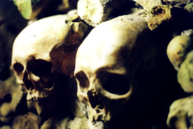 Catacomb Skulls  Paris, France