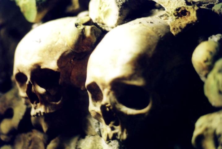Catacomb Skulls  Paris, France