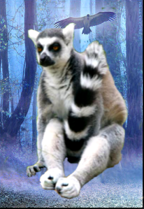 """Mikey-san, when the student is ready, the Hasselhoff will appear."" -- Lemur Master, Mike's Spirit Guide"