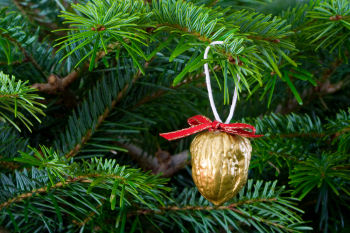christmas_tree_nut_decorations